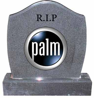 Tombstone Palm